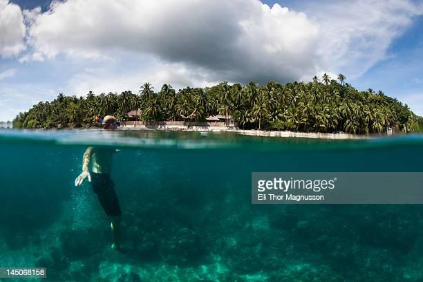 Snorkeler swimming in tropical water