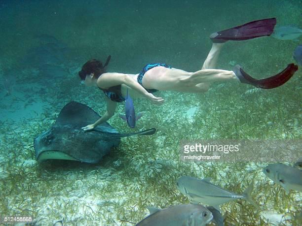 Plongeur à Stingray Hol Chan réserve Marine Ambre gris Caye Belize