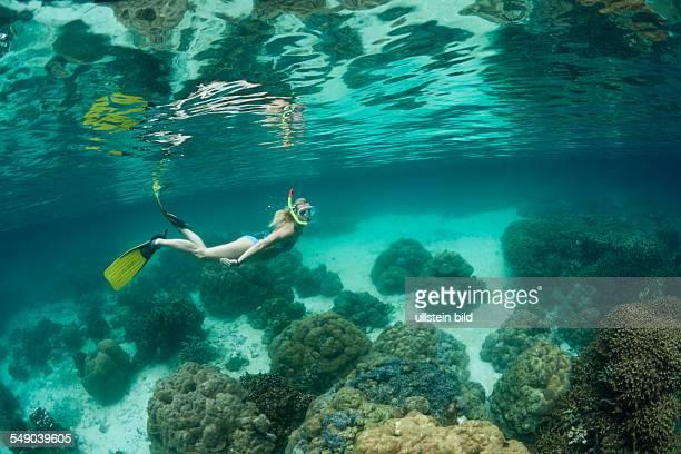 Snorkeling at Risong Bay Risong Bay Micronesia Palau