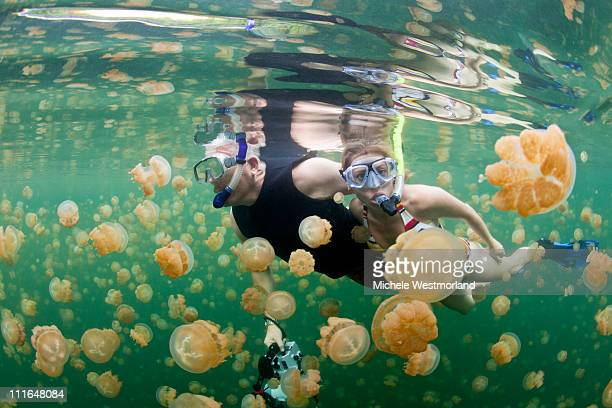 Snorkeling Jellyfish Lake