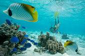 Snorkeling swimming