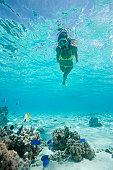 snorkeling vacation tahiti
