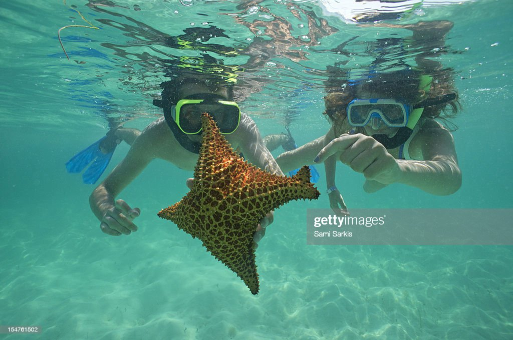 Snorkellers holding a four legs starfish