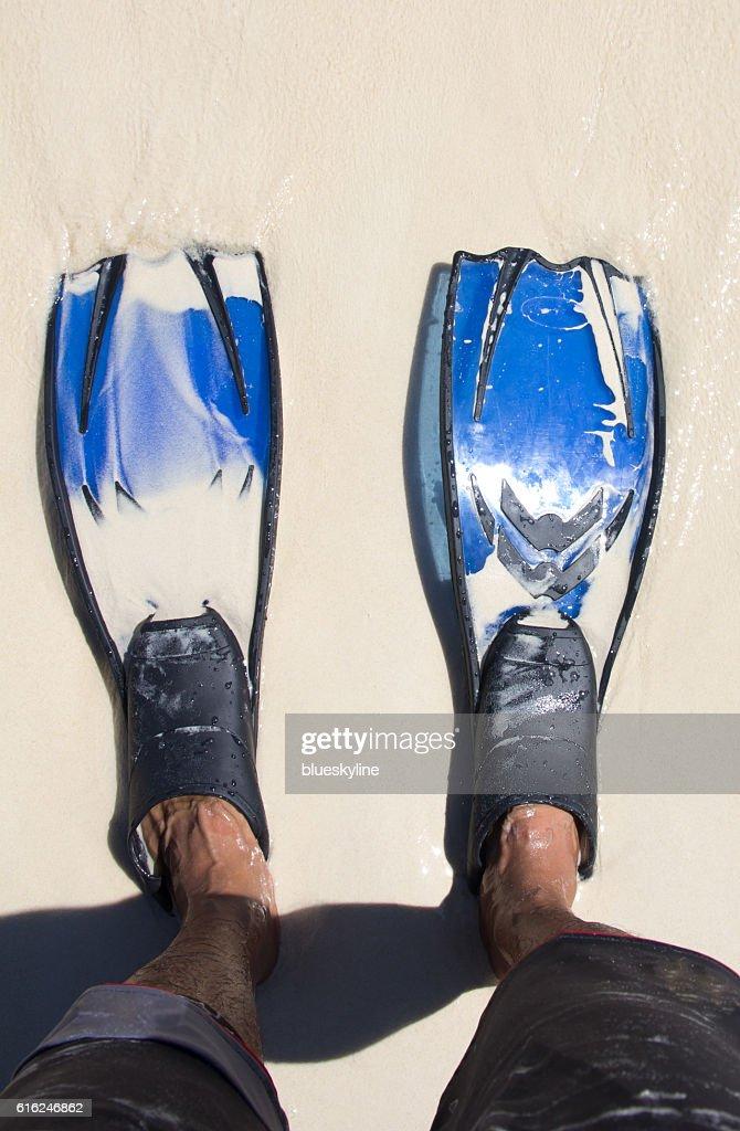 Snorkelling : Stock Photo