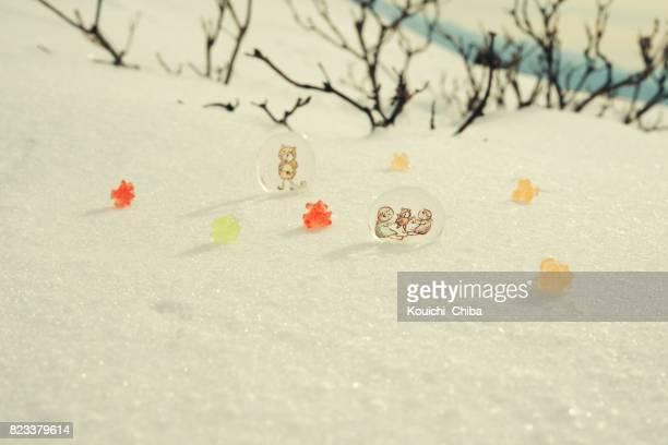 雪と金平糖