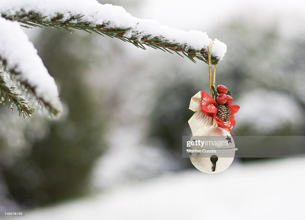 Snow came : Stock Photo