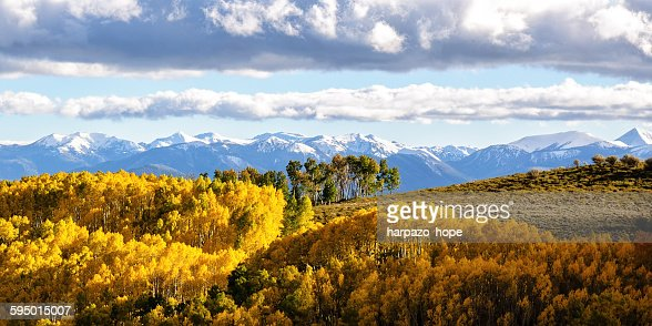 Snow capped mountains and Autumn Leaves