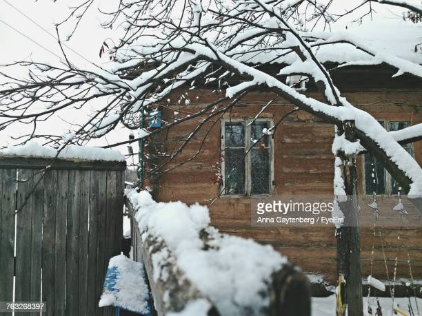 Snow Covered Bare Tree By House
