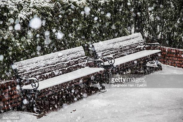Snow Covered Bench At Field Against Trees