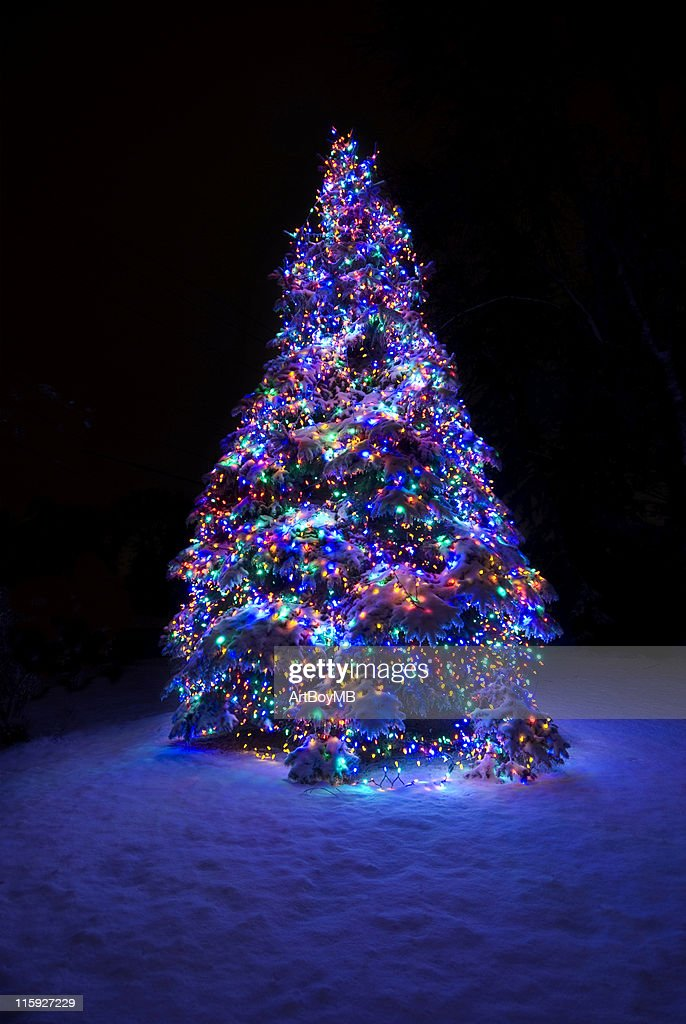 snow covered christmas tree stock photo getty images. Black Bedroom Furniture Sets. Home Design Ideas