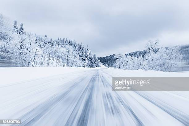 Snow covered forest highway, Steamboat Springs, Colorado, america, USA