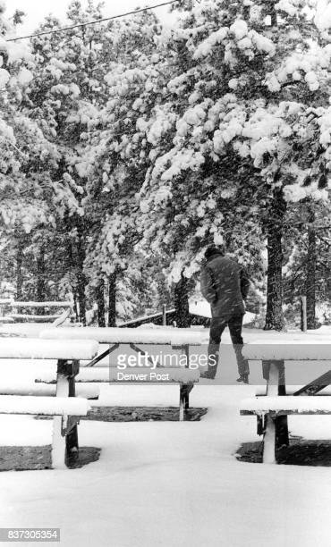 Snow Covered Hills Snow covered the trees and picnic tables at Chief Hosa campground just outside of Evergreen Friday morning as the first snow of...