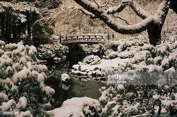 Snow covered japanese garden, winter
