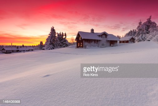 Snow covered log cabins and firs at sunset