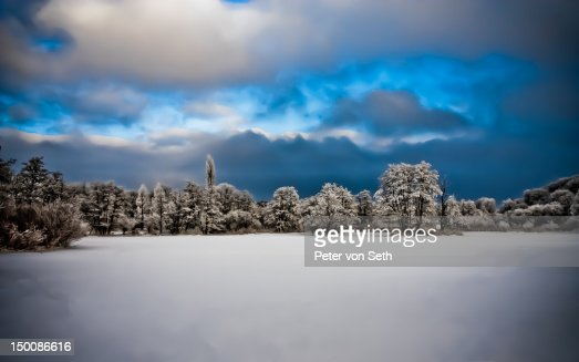 Snow covered meadow at woods edge : Stock-Foto