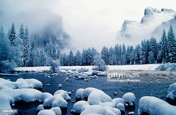 Snow covered mountain peaks and trees, Merced River, Yosemite National Park, Mariposa County, California, USA