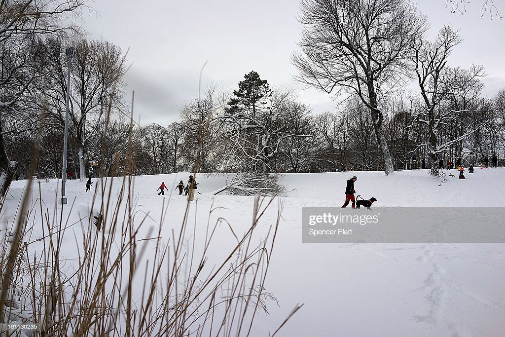 A snow covered Prospect Park is viewed in Brooklyn the morning after a massive snow storm on February 9, 2013 in New York City. New Yorkers woke up to over 10 inches of snow Saturday morning while parts of New England received over thirty inches following a storm that brought high winds and blizzard like conditions to the region.