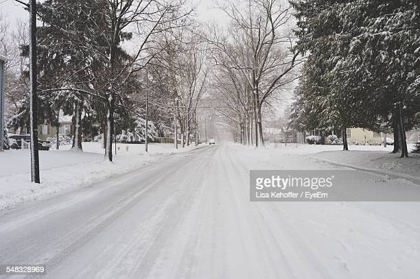 Snow Covered Road Passing Through Trees During Winter