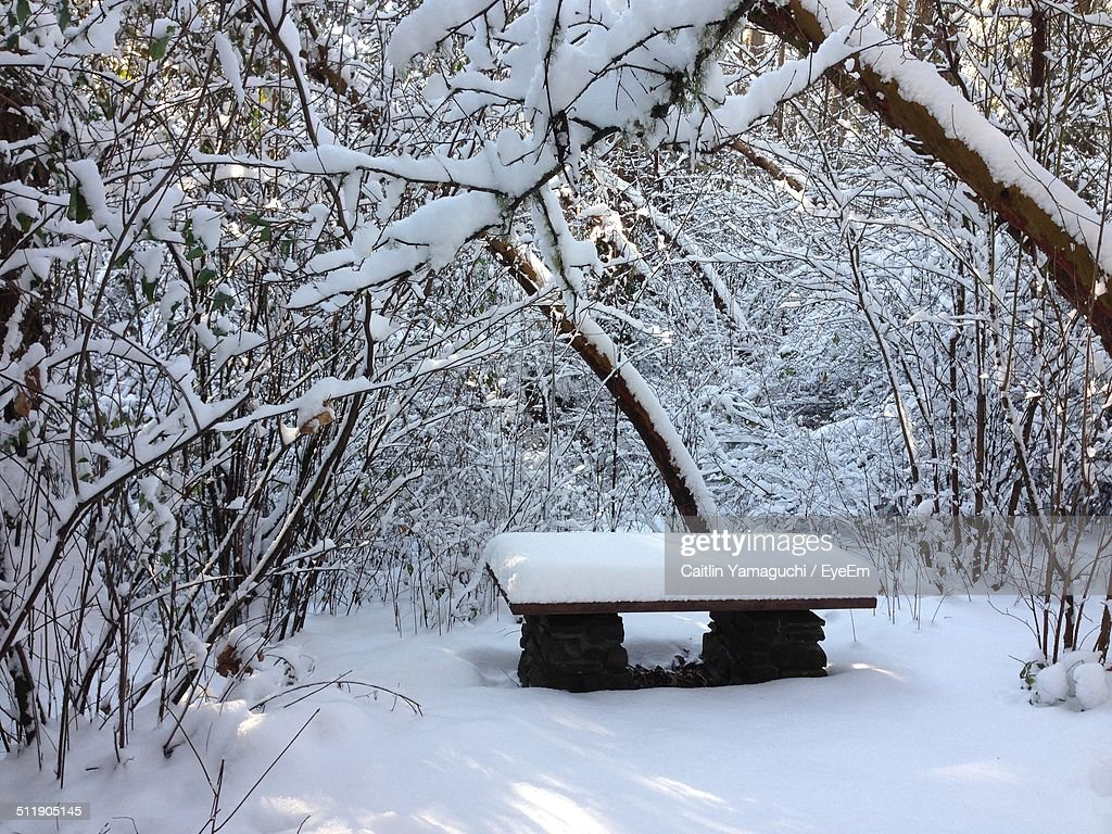 Snow covered stone table in winter