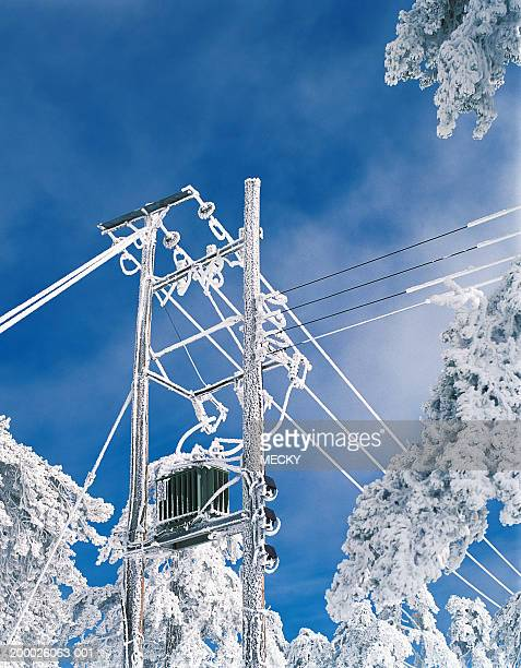 Snow covered telegraph pole, low angle view