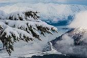 Snow Covered Tree Limb in front of Alaskan Glacier Bay