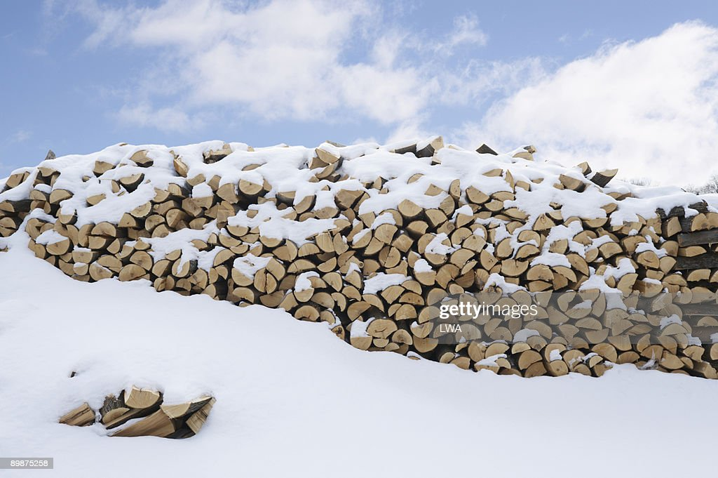 Snow Covered Woodpile : Stock Photo