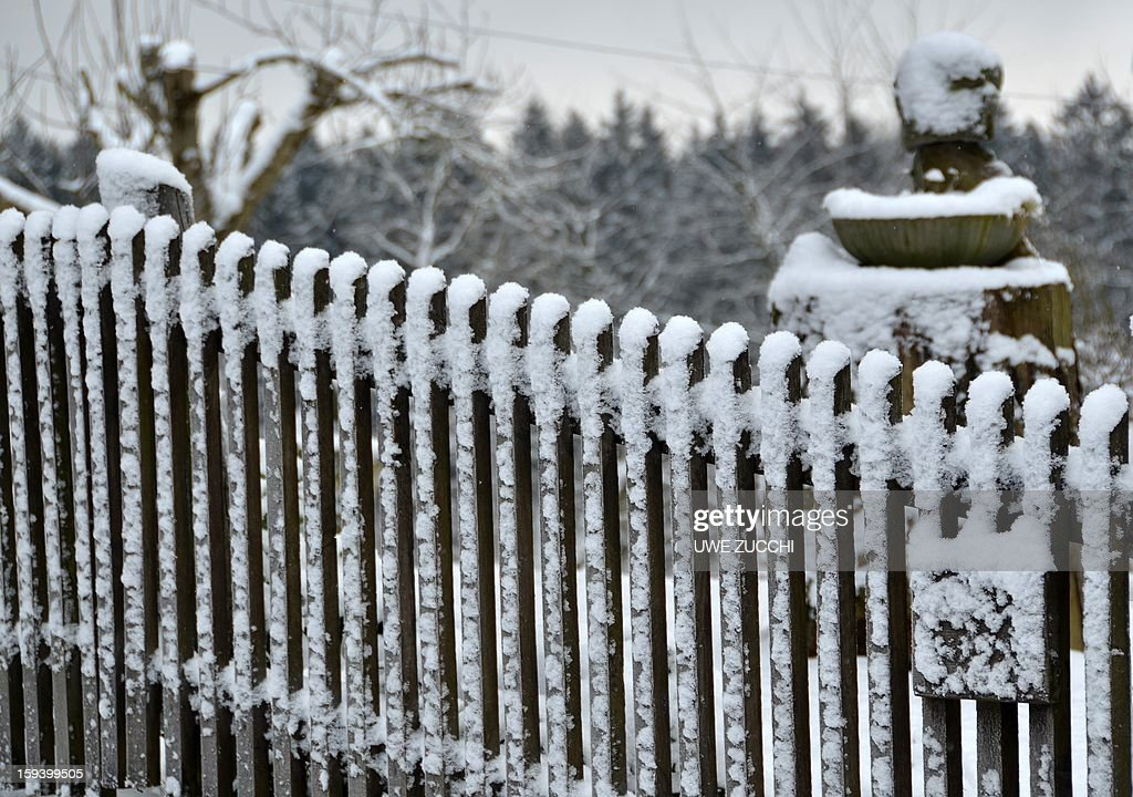 Snow covers a fence on January 13, 2013 in Kassel, center Germany.