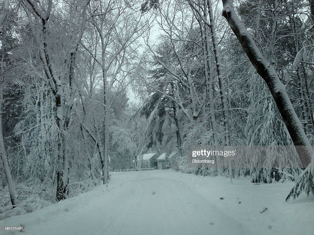 Snow covers the trees and ground in Duxbury, Massachusetts, U.S., on Saturday, Feb. 9, 2013. More than two feet of snow fell on parts of the U.S. Northeast as high winds left hundreds of thousands of people in the region without power, closed highways and forced the cancellation of 4,700 flights. Photographer: David Armstrong/Bloomberg via Getty Images