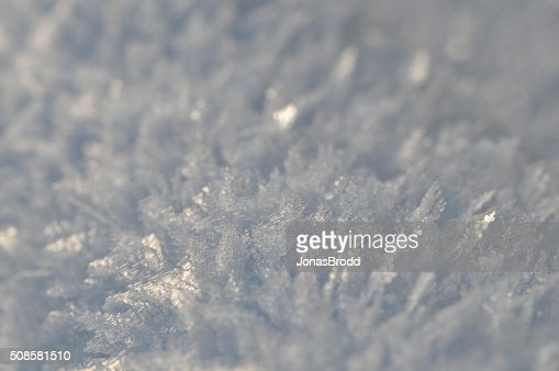 Snow crystals : Stock Photo