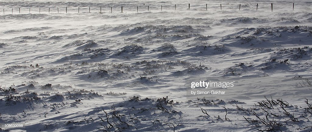 Snow Drifting in Wind : Stock Photo