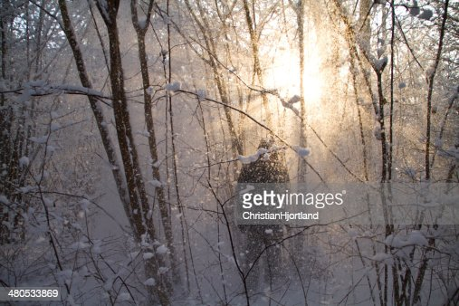 Snow falling in front of the sun : Stock Photo