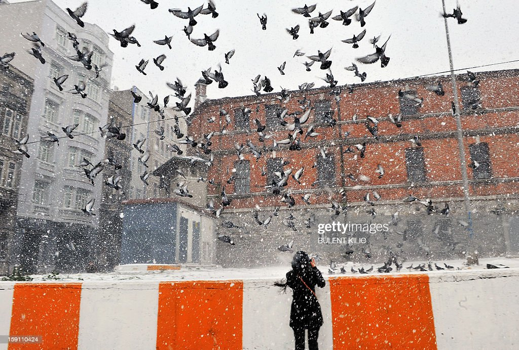 Snow falls as a woman takes a photo of pigeons in Istanbul, on January 8, 2013. Heavy snowfall blanketed Turkey's commercial hub Istanbul, a city of 15 million, paralysing daily life, disrupting air traffic and land transport. Officials said the snow is expected to continue until late tomorrow, according to the weather forecast.