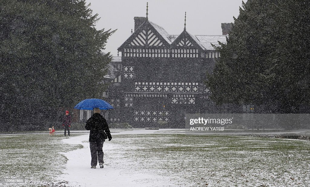Snow falls in Bramhall Park in Stockport, northern England, on January 18, 2013. Snow swept across Britain on Friday, forcing airports to cancel dozens of flights and more than 2,000 schools to close. AFP PHOTO/ANDREW YATES