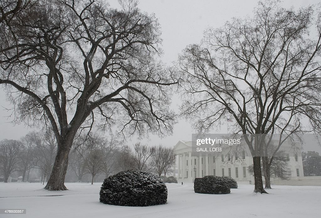 Snow falls on the North Lawn of the White House in Washington, DC, March 3, 2014. Snow began falling in the nation's capital early Monday, and officials warned people to stay off treacherous, icy roads a scene that has become familiar to residents in the Midwest, East and even Deep South this year. Schools were canceled, bus service was halted in places and federal government workers in the DC area were told to stay home Monday. AFP PHOTO / Saul LOEB