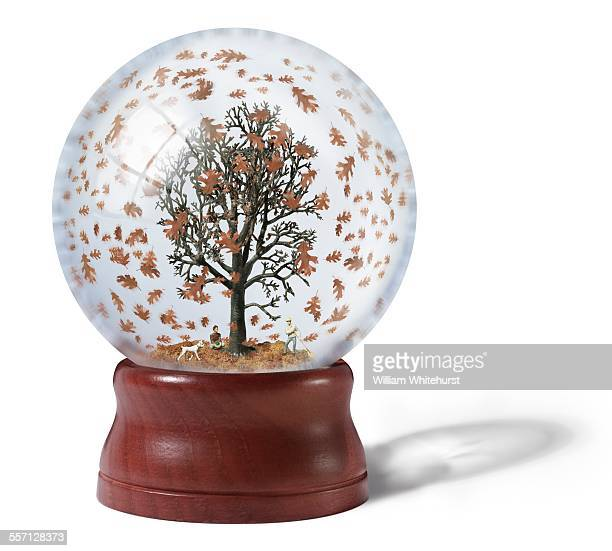 Snow Globe with Fall Leaves