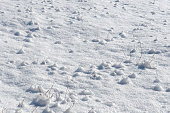http://www.istockphoto.com/photo/snow-mounds-gm654609222-120095815