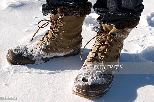 Zapatos de nieve