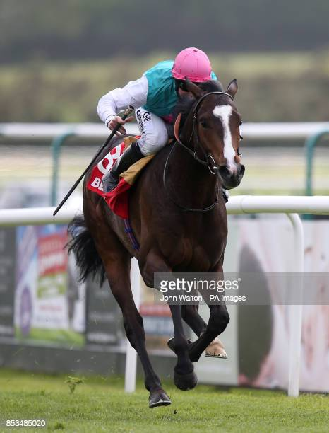 Snow Sky ridden by Jim Crowley comes home to win betfredcom Derby Trial Stakes during the Derby Trial Raceday at Lingfield Park Racecourse