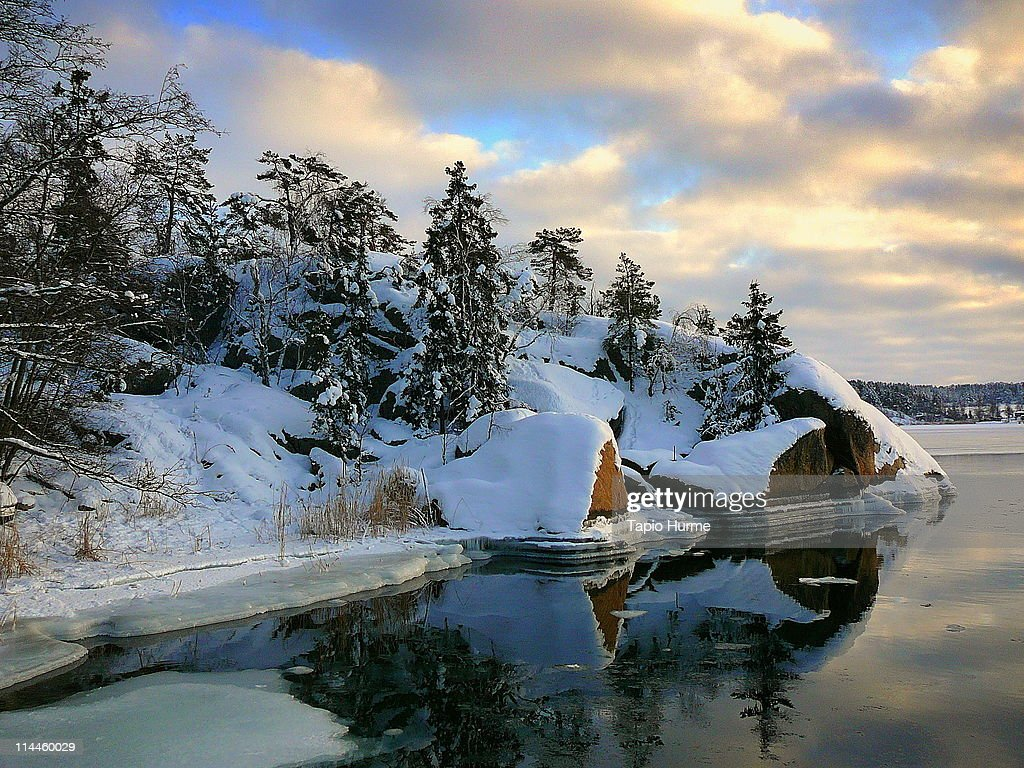 Snow trees reflection in water : Stock Photo
