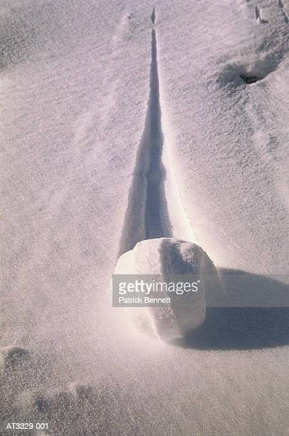 Snowball creating trail in snow, close-up