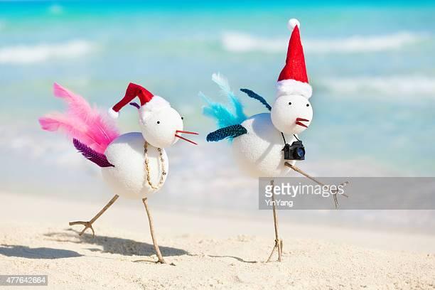 Snowbirds Christmas Winter Tropical Beach Vacation