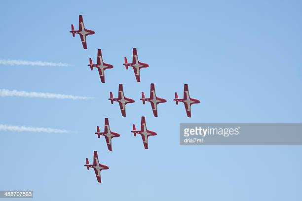 Snowbirds Flying In Formation