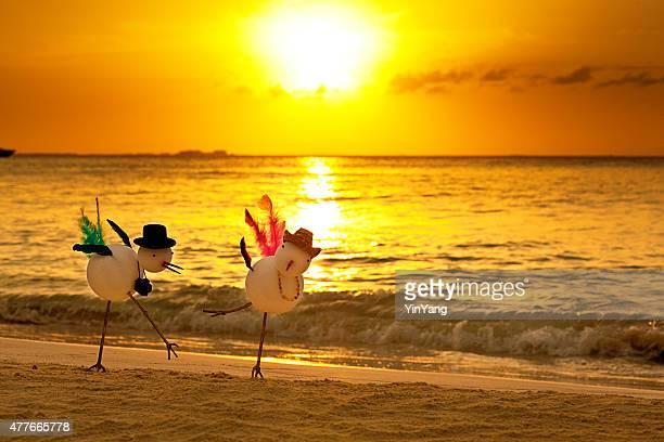 Snowbirds Winter Tropical Beach Vacation at Sunset