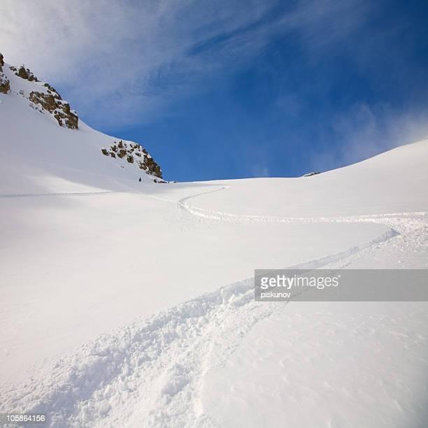 Du snowboard sur poudreuse