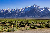 A snow-Capped Mount Williamson from the Owens Valley in Spring with yellow fire hydrant.