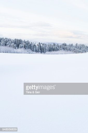 Snow-covered landscape, Trondheim, Norway