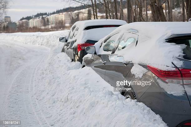Snowed in cars