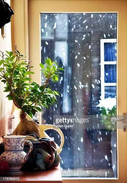 Snowfall...