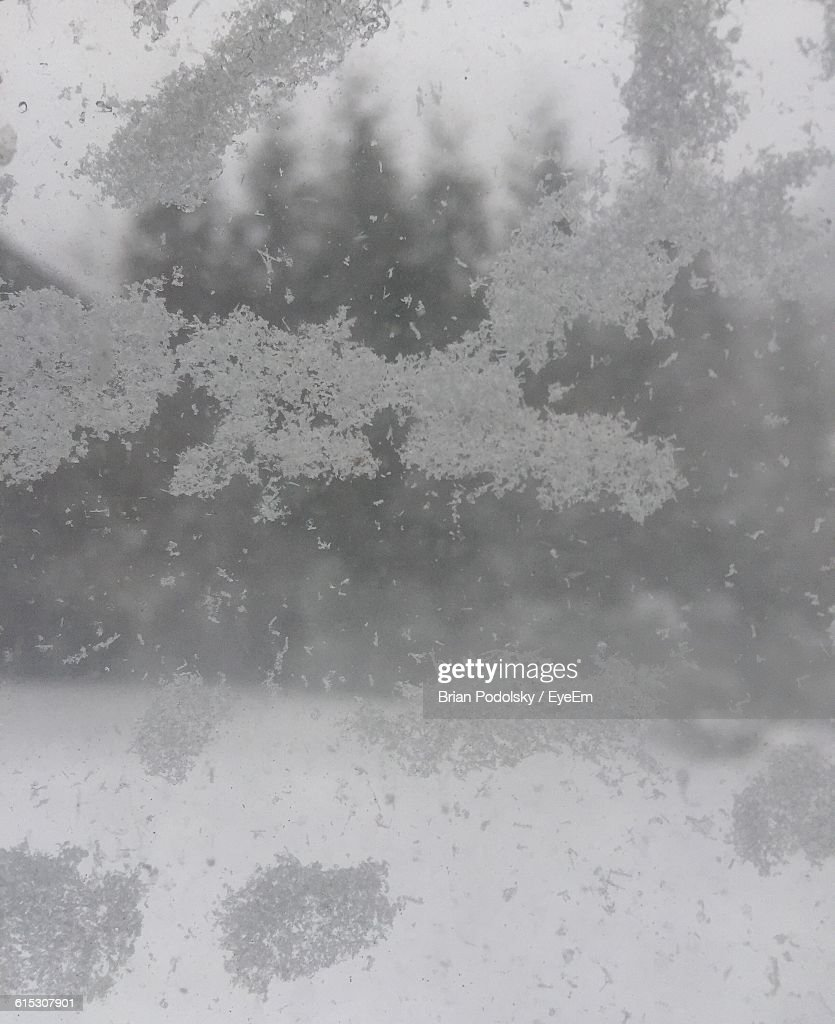 Snowflakes On Glass Window During Winter
