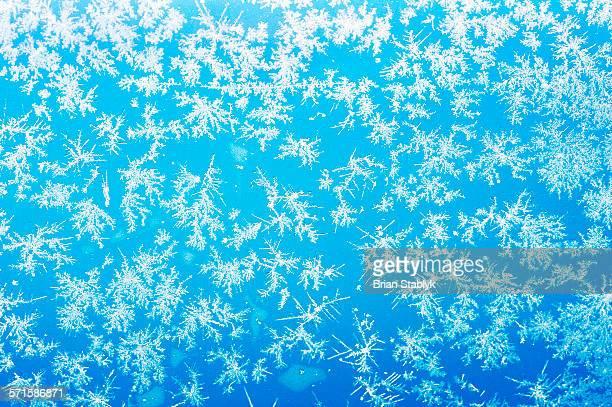 Snowflakes On Glass Window